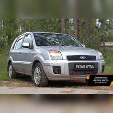 Защитная сетка и заглушка решетки переднего бампера Ford Fusion 2005—2012