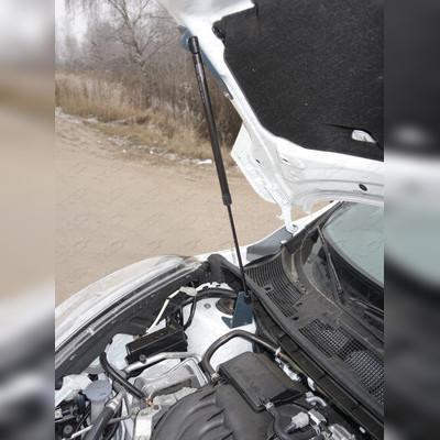 Упоры капота (2WD)